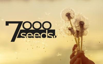 7000seeds – ein Kunstprojekt für lernende Unternehmen und Organisationen
