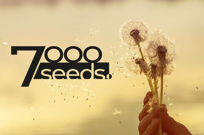 7000 seeds